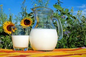 Milk - Time Management Apps