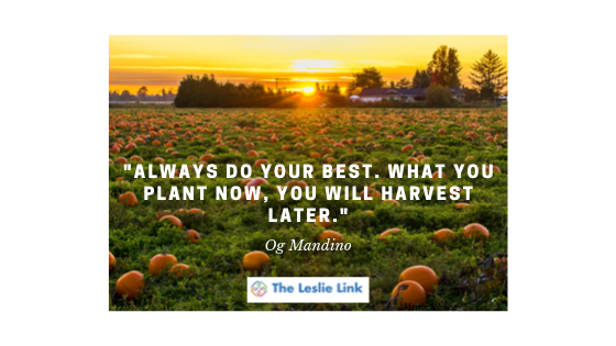 Harvest Later - Motivational Quote