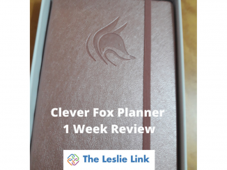 Clever-Fox-Planner-1-Week-Review